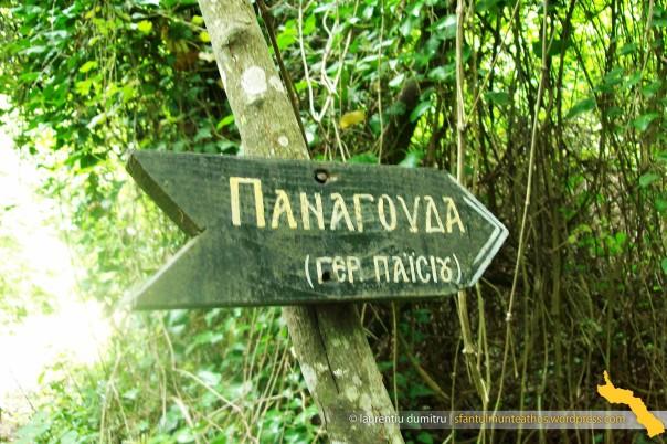 Spre Panaguda (3)