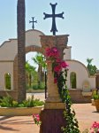 St. Anthony's Arizona (203)
