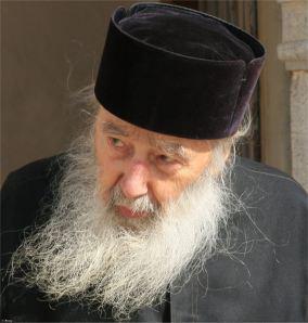 avva Petroniu Tanasa (4)