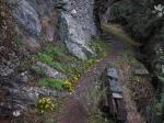 Monopati to Agios Gerasimos Cave