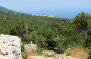 """""""Pustia"""" Viglei. În depărtare, Marea Lavră, cea mai importantă mănăstire în ierarhia Muntelui, de care aparţine şi schitul românesc Prodromu"""