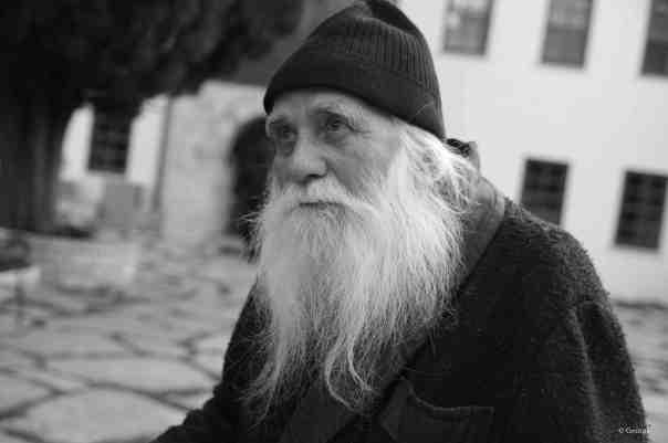 avva Iulian-2016 (5)
